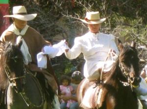 Caballos de Paso traditional Peruvian horse riding