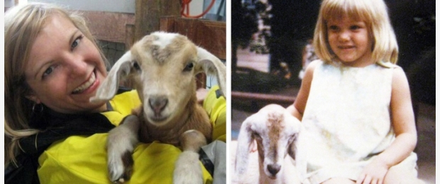 Goats now and then