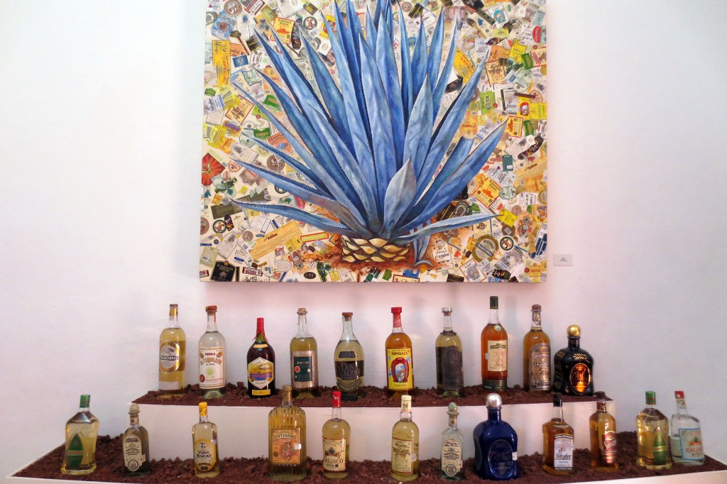 Museo Tequila