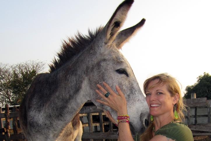 burro-kd