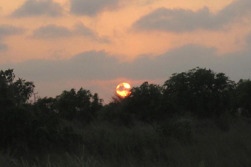 finca-sunset