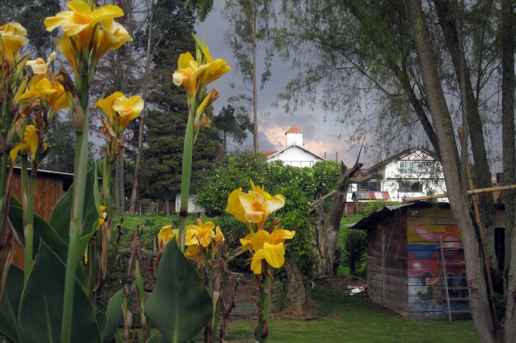 santacruz-sky