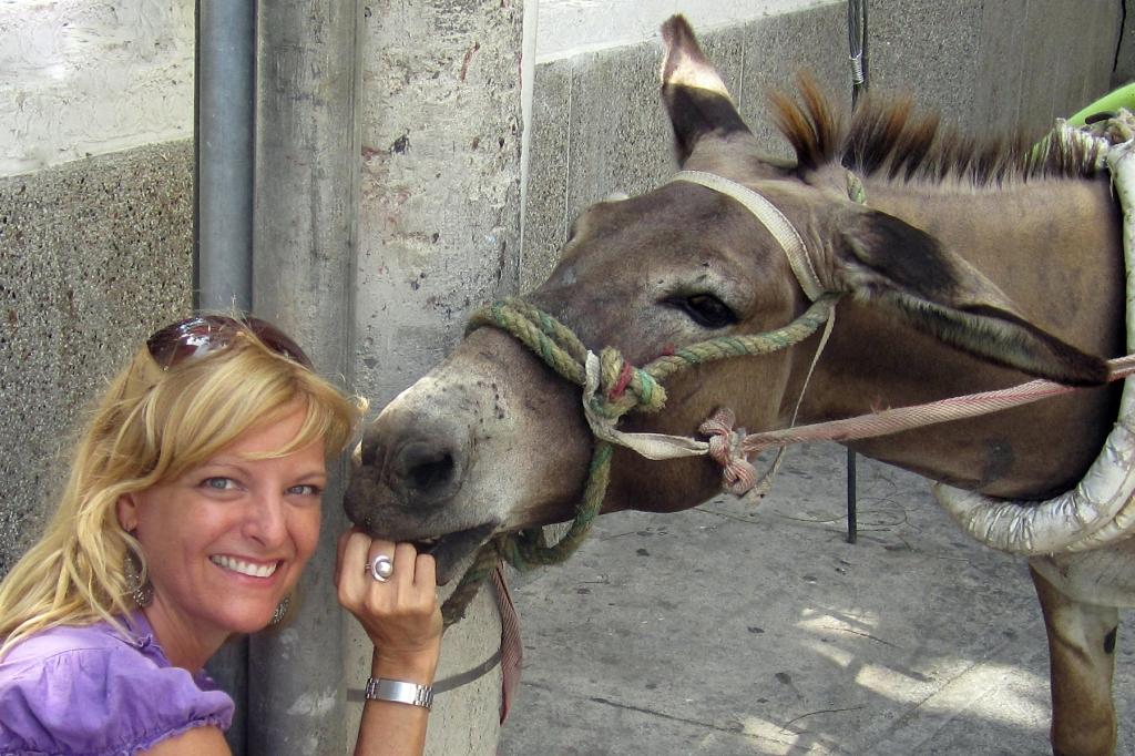 burro-dero