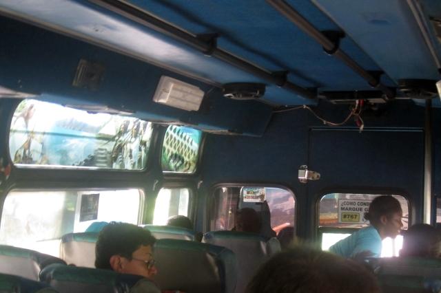palo-bus