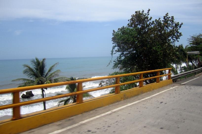 palo-view