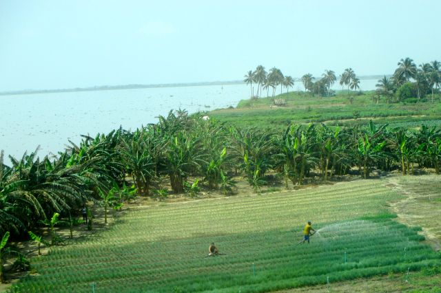 Leaving Barranquilla... look at that lush tierra!
