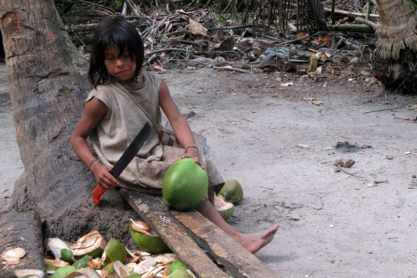 coconut-koji