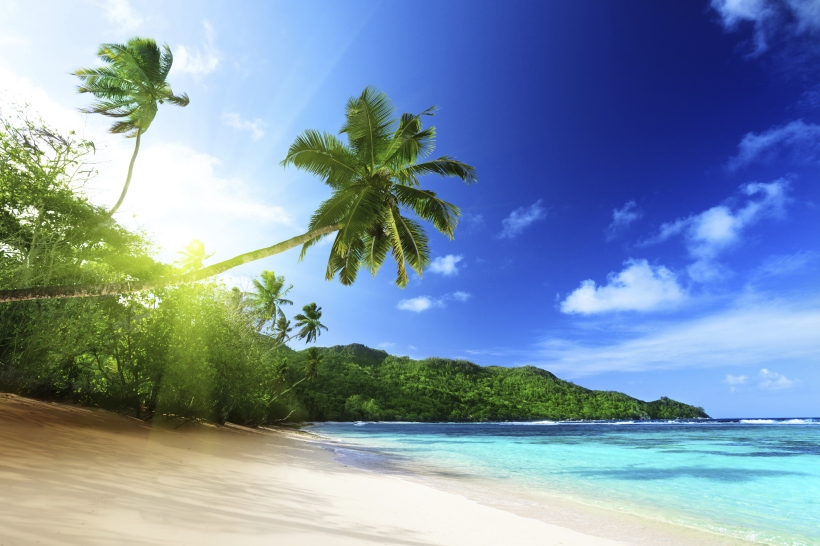 Good Morning Sunshine. photo © mycaribspot.com